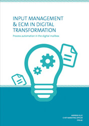 Input Management in Digital Transformation